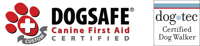 DOGSAFE Certified and Dogtec Certified Dog_Wlker